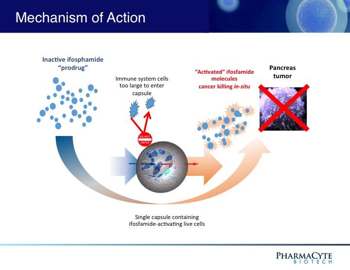 Cancer Treatment Technologies Pharmacyte Biotech